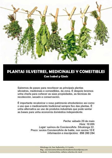Plantas silvestres, medicinais e comestibles 20.05.2017