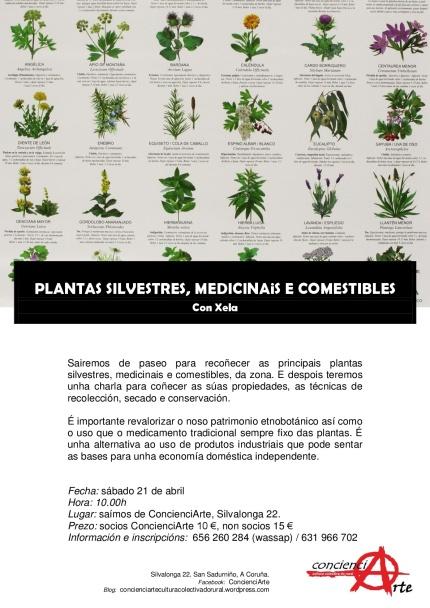 Plantas silvestres, medicinais e comestibles 21.04.2018