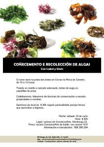 cartel ALGAS 10.06.2017