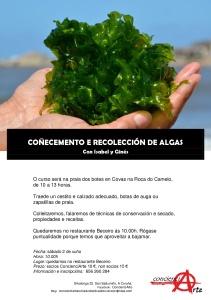 cartel RECOLECCIÓN DE ALGAS 02.06.2018-001